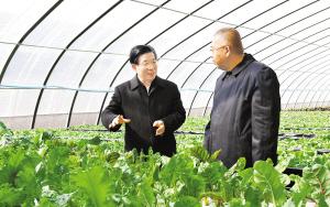 王东峰到正定县调研检查